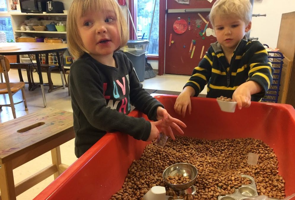 Full of Beans: Fun at the Sensory Table