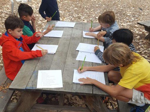 Building Classroom Environment – 3rd Grade Interviews