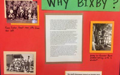 So, Why Bixby?